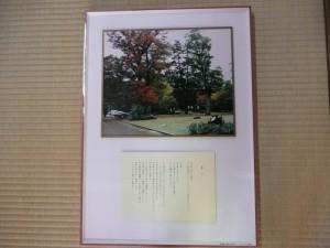 木村展パート2-4